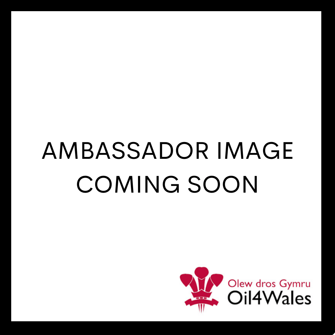 https://www.oil4wales.co.uk/wp-content/uploads/2021/08/AMB.png
